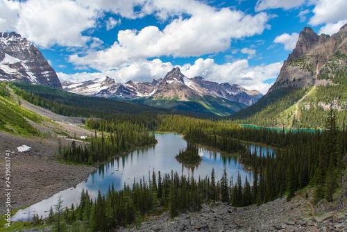 Fotobehang Bergen Opabin lake beautiful hiking trail in cloudy day in Spring, Yoho, Canada