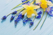 Yellow And Blue Spring Flowers...