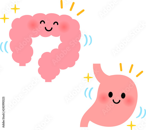 健康な胃腸のキャラクター Canvas Print