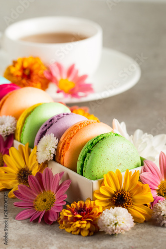 Fotografía  Still life and food photo of cake macarons in a gift box with flowers, a cup of tea on light background