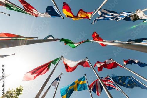 Fotomural  Flaggen international