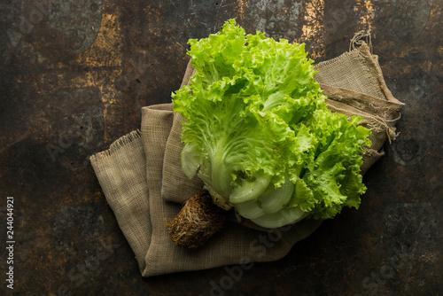 Fotografía  Loose-leaf Lettuce on rustic background