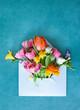 canvas print picture - Blauer Briefumschlag mit frischen Blumen