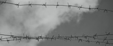 Barbed Wire Bottom View Against The Sky. Black And White Photo