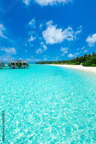 Poster Tropical beach tropical Maldives island with white sandy beach and sea