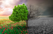 Leinwanddruck Bild - ecological concept with tree and climate changing landscape