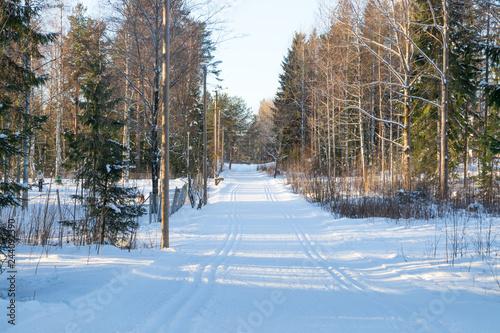 Deurstickers Berkbosje Ski track at winter forest in Finland