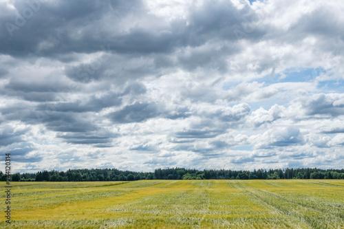 Foto  Wolken Himmel über Wald und Wiese