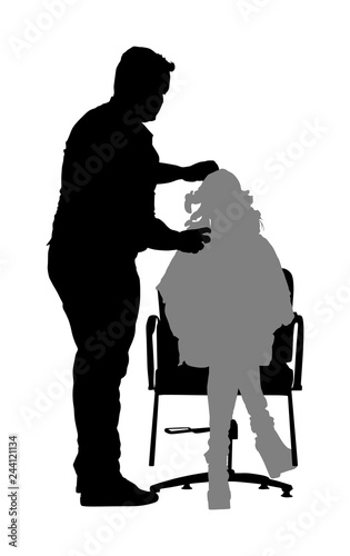 Fotografie, Obraz  Female hairdresser with client lady in hairdress beauty salon vector silhouette