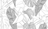 Vector tropical seamless pattern. Exotic plants isolated on white background. Hand drawn textile print. - 244154198