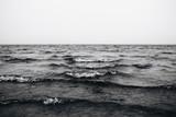 fale na morzu czarno-białe zdjęcie - 244164528