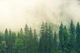 Landscape Premium Masterpiece