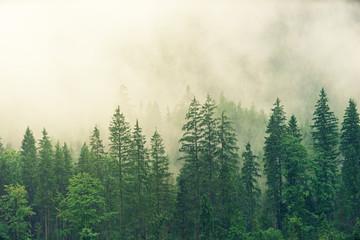 Fototapeta Minimalistyczny Landscape Premium Masterpiece