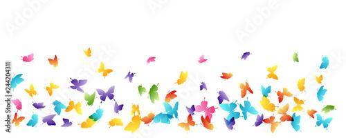 Flying butterflies. Vector decoration element. - 244204311
