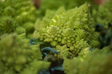 Harvest. Unusual Variety Of Cabbage. A Fragment Of Romanesco Broccoli. Natural Color Background.
