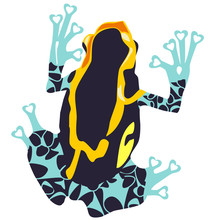 Vector Poison Dart Frog