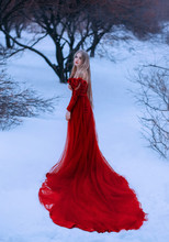 Story Of Frozen Fairy Tale, Wo...