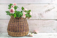 Beautiful Greeting Card With Pink English Roses In Vintage Wicker Basket On White Paint Wooden Background