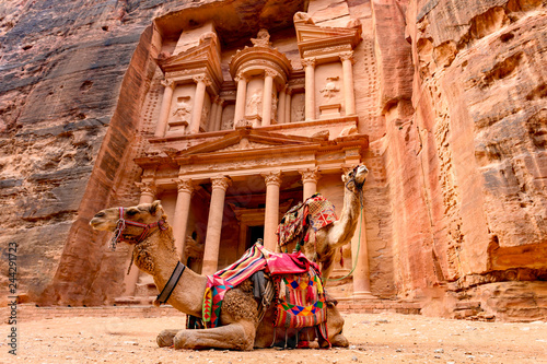 Staande foto Kameel Spectacular view of two beautiful camels in front of Al Khazneh (The Treasury) in Petra. Petra is a historical and archaeological city in southern Jordan.