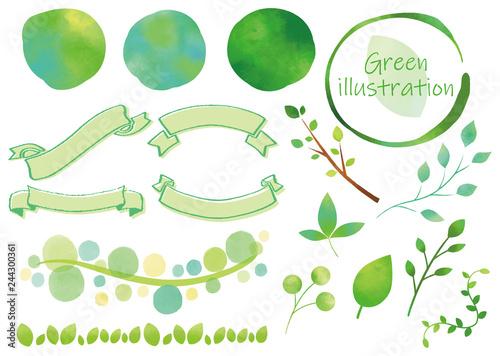 Fotografía  緑 装飾セット