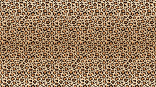 Leopard Print Pattern. Seamles...