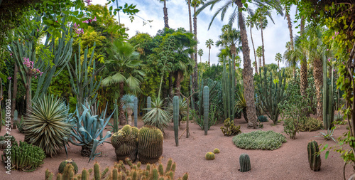 Photo Panorama of The Majorelle Garden is a botanical garden and artist's landscape garden in Marrakech, Morocco