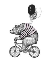 Bear Ride Bicycle Balloon T-sh...