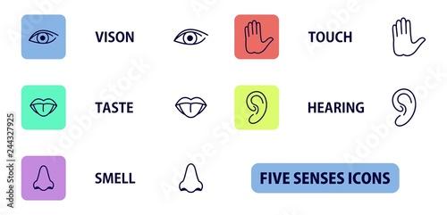 Foto  5 senses icons
