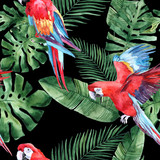 Watercolor seamless pattern with tropical leaves and tropical birds. Summer decoration print for wrapping, wallpaper, fabric. Hand drawn illustration - 244343536