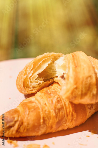 French Chocolate Croissant In Sunny Provence Summer