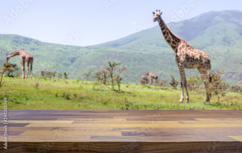 Empty table top for product display montage. Safari lodge concept and giraffes blurred in the background.