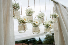Decorative Flowers In Bulbs Hu...