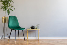 Luxury And Minimalistic Grey Home Interior With Green Velvet Chair, Coffee Table With Accessories And Tropical Plant. Copy Space For Inscription, Mock Up Poster. Empty Wall. Brown Wooden Parquet.