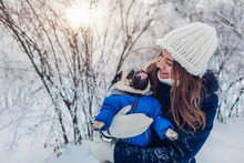 Pug Dog Walking On Snow With H...