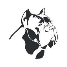 Cane Corso Dog Logo. Dog Element Cane Corso Black On White Background For Design. Vector.