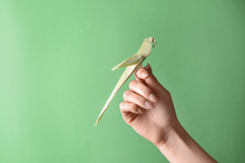 Female Hand With Origami Parrot On Color Background