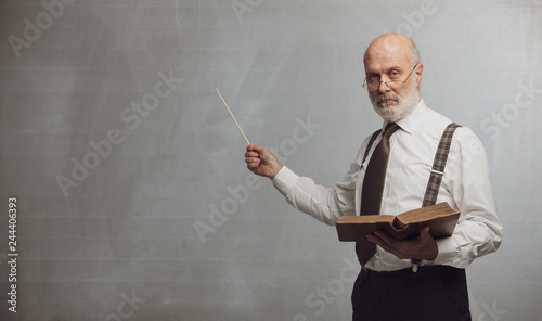 Senior academic professor giving a lecture Wallpaper Mural