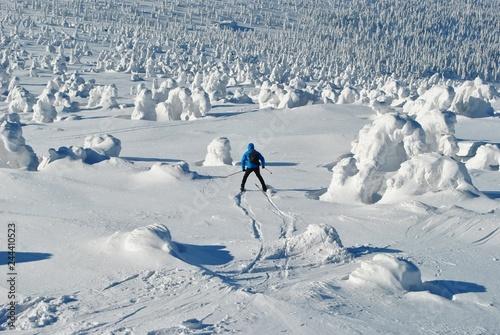 Narciarz na śniegu