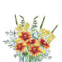 Summer Bouquet Of Daisies, Herbs, Immortelle And Blanket Flowers. Watercolor Hand Drawn Painting Illustration Isolated On A White Background.