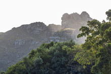 View On Table Mountain From Kirstenbosch, Cape Town