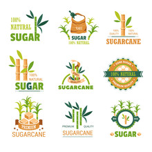Sugarcane Natural Product Sweet Condiment Of Plant