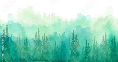 Akwarela grupa drzew - jodła, sosna, cedr, jodła. zielony las, krajobraz, krajobraz leśny. Rysunek na białym tle odizolowane. Mglisty las w haz. Plakat ekologiczny. Malarstwo akwarelowe