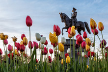 Statue Of George Washington In Spring