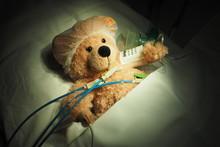 Teddy Patient