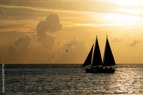 Poster Brick beautiful sunset with sailboat silhouette