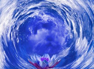 Naklejka 3D lotus flower on sea background