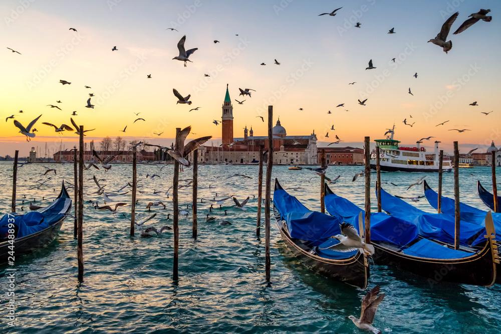 Fototapeta Sunrise over St Giorgio Maggiore and Birds over the Grand Canal, Venice, Italy
