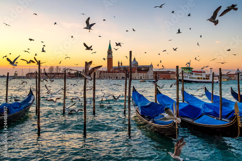 Sunrise over St Giorgio Maggiore and Birds over the Grand Canal, Venice, Italy