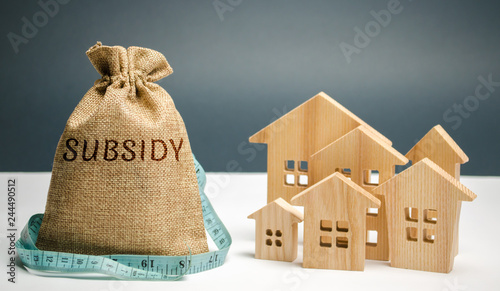 Fotomural Money bag with the word Subsidy and wooden houses