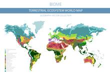 Terrestrial Ecosystem World Ma...